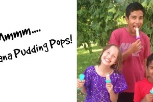 Recipe #3: Banana Pudding Pops (Dairy Free and AIP!)