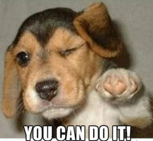 you can do it puppy