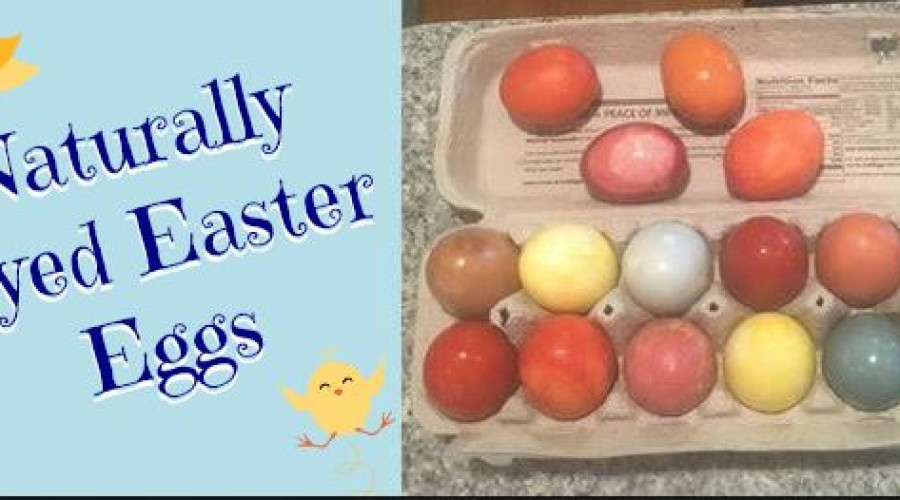 I Love Our Easter Eggs!!!